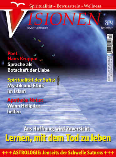 Visionen Einzelheft November 2014