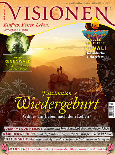 Visionen Einzelheft November 2018